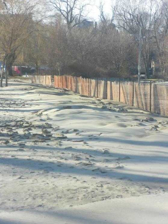 Windswept Sand