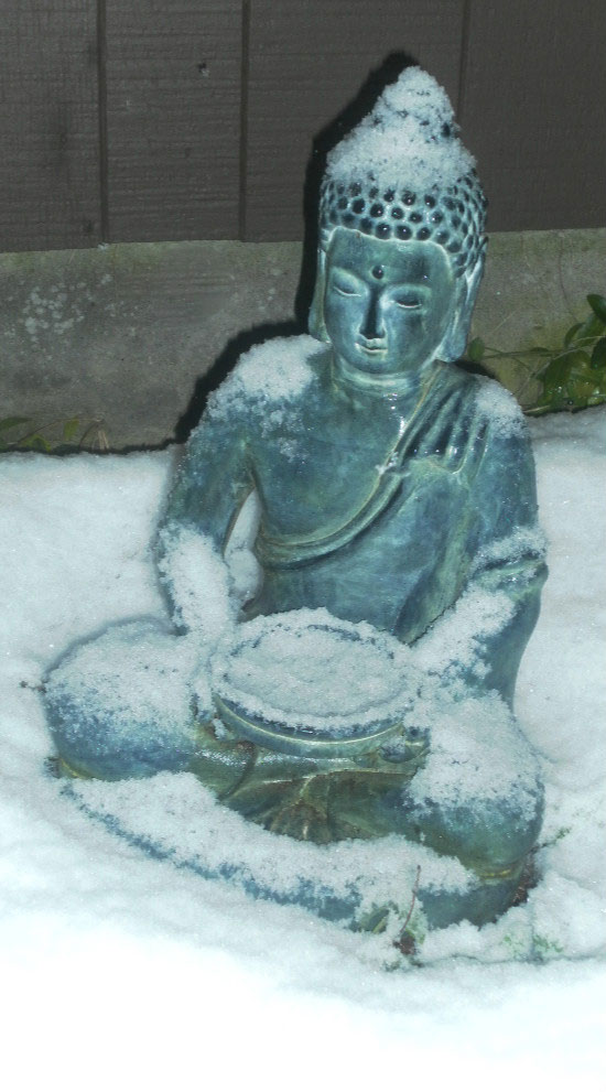 night buddha
