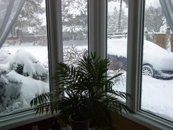 Snowmagedon 2013 Feb