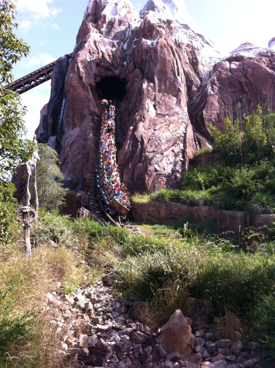 Disney Yeti Coaster